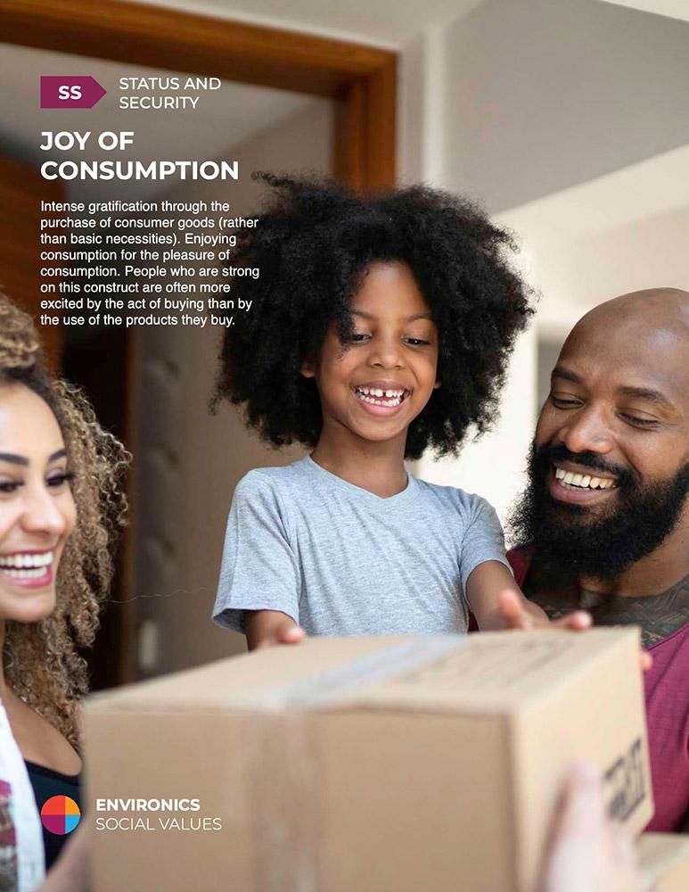 Joy of Consumption